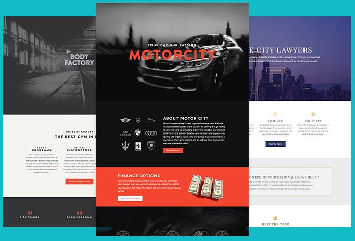Web walrus Landing Pages