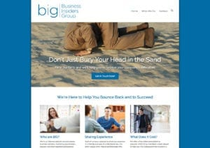 Business Insiders Group Homepage design by Webwalrus